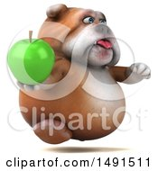 Clipart Of A 3d Bill Bulldog Mascot Holding An Apple On A White Background Royalty Free Illustration