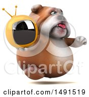Clipart Of A 3d Bill Bulldog Mascot Holding A Tv On A White Background Royalty Free Illustration