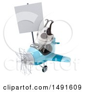 3d Jack Russell Terrier Dog Aviator Pilot Flying An Airplane On A White Background