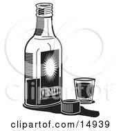 Bottle Of Whiskey By A Shot Glass In A Bar Clipart Illustration