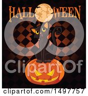 Black Cat On A Jackolantern Pumpkin With A Full Moon And Halloween Text Over Checkers
