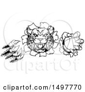 Clipart Of A Wildcat Mascot Shredding Through A Wall With A Cricket Ball Black And White Royalty Free Vector Illustration by AtStockIllustration