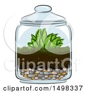 Clipart Of A Glass Terrarium With Plants Royalty Free Vector Illustration by BNP Design Studio