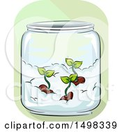 Clipart Of A Jar With Germinated Seeds On Cotton Royalty Free Vector Illustration