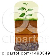 Clipart Of A Plant With Layers Of Soil Beneath Royalty Free Vector Illustration