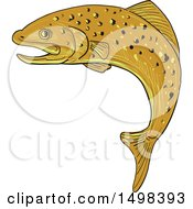 Sketched Jumping Spotted Brown Trout