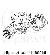Clipart Of A Black And White Ferocious Wolf Slashing Through A Wall With A Football Royalty Free Vector Illustration