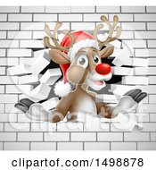 Red Nosed Christmas Reindeer Breaking Through A White Brick Wall