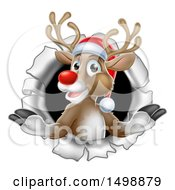 Clipart Of A Red Nosed Christmas Reindeer In A Hole In A Wall Royalty Free Vector Illustration