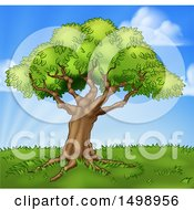 Clipart Of A Mature Tree On A Grassy Hill Against A Blue Sky Royalty Free Vector Illustration
