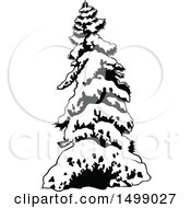 Clipart Of A Snow Flocked Evergreen Tree Royalty Free Vector Illustration