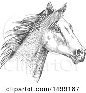 Poster, Art Print Of Sketched Gray Horse Head
