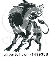 Clipart Of A Sketched Angry Wild Boar Royalty Free Vector Illustration