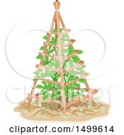 Clipart Of A Tomato Plant Growing On A Trellis Royalty Free Vector Illustration
