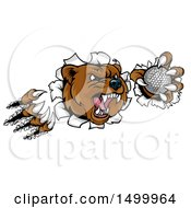 Clipart Of A Vicious Aggressive Bear Mascot Slashing Through A Wall With A Golf Ball In A Paw Royalty Free Vector Illustration