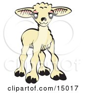 Sweet Baby Lamb Clipart Illustration