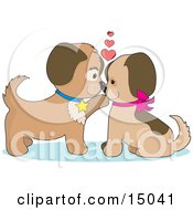 Two Dogs In Puppy Love Kissing And Looking Eachother In The Eyes Clipart Illustration