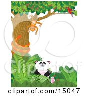 Cute Baby Panda Sitting In Green Foliage While An Orange Snake Coils Himself Around A Tree In Which A Scarlet Macaw Parrot Perches And Watches A Silly Monkey That Is Hanging Upside Down In A Zoo Clipart Illustration by Maria Bell #COLLC15047-0034