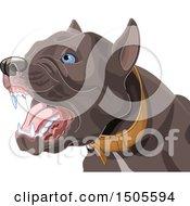 Poster, Art Print Of Barking Aggressive Pit Bull Dog