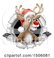 Red Nosed Christmas Reindeer Breaking Through A Wall