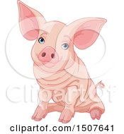 Clipart Of A Cute Blue Eyed Pink Pig Sitting Royalty Free Vector Illustration