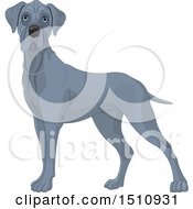 Clipart Of A Gray Great Dane Dog Royalty Free Vector Illustration by Pushkin