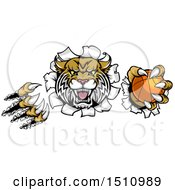 Clipart Of A Vicious Wildcat Mascot Shredding Through A Wall With A Basketball Royalty Free Vector Illustration by AtStockIllustration