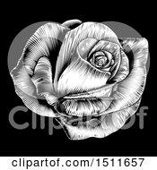 Black And White Engraved Rose Flower On Black