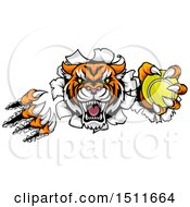 Clipart Of A Vicious Tiger Mascot Slashing Through A Wall With A Tennis Ball Royalty Free Vector Illustration