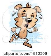 Tired Running Female Dog