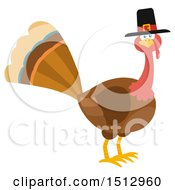 Clipart Of A Pilgrim Thanksgiving Turkey Bird Royalty Free Vector Illustration by Hit Toon