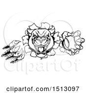 Clipart Of A Black And White Vicious Roaring Panther Mascot Shredding Through A Wall With A Baseball Royalty Free Vector Illustration