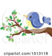 Clipart Of A Blue And Yellow Bird Perched On A Spring Blossom Branch Royalty Free Vector Illustration