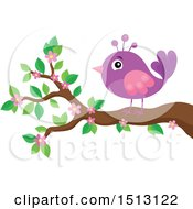 Clipart Of A Purple And Pink Bird Perched On A Spring Blossom Branch Royalty Free Vector Illustration
