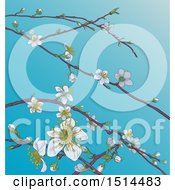 Clipart Of A Background Of Branches With Spring Blossoms Over Blue Sky Royalty Free Vector Illustration by AtStockIllustration
