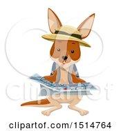 Kangaroo Explorer Reading A Map