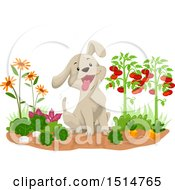Happy Puppy Dog Sitting In A Vegetable Garden