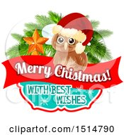 Merry Christmas With Best Wishes Greeting With An Owl