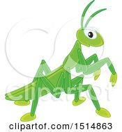 Clipart Of A Cute Praying Mantis Royalty Free Vector Illustration
