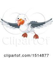 Cute Flying Albatross