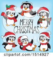 Merry Christmas Greeting With Penguins On Blue