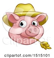 Happy Pig Mascot Face Wearing A Straw Hat And Chewing On Straw