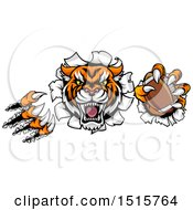 Clipart Of A Vicious Tiger Mascot Slashing Through A Wall With An American Football Royalty Free Vector Illustration