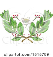 Clipart Of A Leaf Flower And Fruit Of Yerba Mate Design Royalty Free Vector Illustration by patrimonio