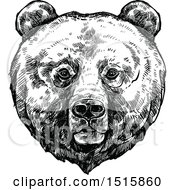 Clipart Of A Black And White Sketched Grizzly Bear Face Royalty Free Vector Illustration