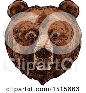 Clipart Of A Sketched Grizzly Bear Face Royalty Free Vector Illustration by Vector Tradition SM