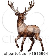Clipart Of A Sketched Reindeer Royalty Free Vector Illustration
