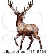 Sketched Reindeer