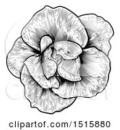 Black And White Rose Flower In Woodcut Style