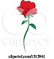Poster, Art Print Of Single Red Rose